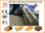 Kh 250 자동적인 소형 건빵 기계
