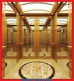 Elevatore facente un giro turistico di panorama dell'elevatore dello specchio di Ecthed & di vetro