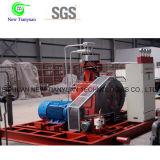Тип компрессор Gl компрессора баллона метана заполняя диафрагмы