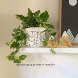 Piantatrice di carta, POT della pianta, piantatrice moderna, piantatrice dell'interno, supporto della pianta, decorazione nera della casa dell'oro, sacchetto della carta da parati lavabile, sacchetto di memoria