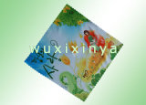 Microfiber Cleaning Cloth (hot transfer printing)