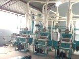 Weizen Flour Milling Machine 10-30t für Äthiopien
