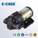 Gleichstrom-Pumpe 75gpd selbstansaugendes kleines Ec-803