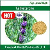 Extrato natural de Cyanotis Vaga, pó do extrato de Cyanotis Vaga, beta Ecdysterone