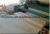chapa del álamo de 0.7m m para la madera contrachapada