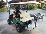 4 carros de golf eléctricos de la caza de la persona para la venta (2+2)