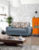 リビングルームのためのシンプルなスタイル機能ソファベッド(VV902)