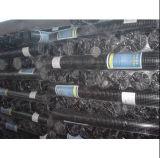 Treillis métallique soudé galvanisé plongé chaud (CE&SGS)