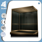 Het Roestvrij staal Capacity 800kg Passenger Elevator van de snelheid 1.75m/S