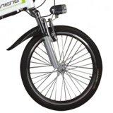 Faltendes elektrisches Fahrrad (LN20F04)