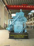 Weichai Power Cw6200zd mit Marathon Alternator