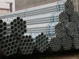 Горячекатаное Q195-Q235 гальванизированное вокруг стальной трубы для лесов