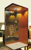 Aluminium Shaft를 가진 가정 Lift
