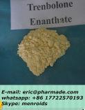 Trenbolone 주사 가능한 Enanthate 완성되는 기름 Trenbolone Enanthate 200mg