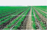 De Band van de druppel met Dubbele Lijn voor Irrigatie