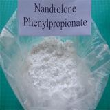 Nandrolone esteroide Phenylpropionate del Npp/del polvo del Bodybuilding esteroide inyectable