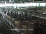 2t/H beenden Joghurt-Produktionszweig