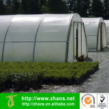 Сад Tunnel Film Mateial Plastic PE для Agriculture