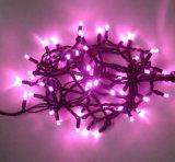 LED cadena de luz de la secuencia de Navidad con flash al aire libre para los bulbos Decortaion