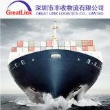 Frete de mar de FCL/LCL de Shanghai/Qingdao/Dalian/Wuhan/Ningbo de China a no mundo inteiro