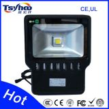 Proyector LED 30W LED Proyector, Foco LED con el CE RoHS