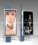 Advertizing (HS-LB-005)를 가진 LED Light Box