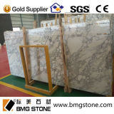 Italien Arabescato Marble Slab für Countertop oder Floor Tile