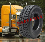 Neumático radial del carro TBR de Dunlop de la alta calidad de la fábrica del halcón, neumático del omnibus