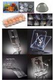 Kleines Plastikei-Tellersegment, das Maschinen-Preis bildet