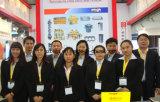 Pomp van uitstekende kwaliteit van de Brandstofinjector Cat325D/330d/336D de Hoge die Presure/van de Injectie voor de Motor van het Graafwerktuig in 319067700/3190677 van Japan wordt gemaakt Totale 27kg