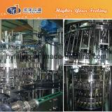 Linea di produzione di riempimento della birra della bottiglia di vetro