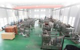 Chaîne de production molle carbonatée complètement automatique