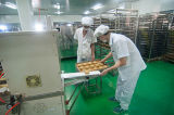 Tunnel-Ofen-Tunnel-Ofen, Lebensmittelproduktion-Zeile, Brot-Kuchen-Produktionszweig. Reale Fabrik seit 1979