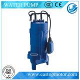 0.75HP~2HP의 Power를 가진 Irrigation를 위한 Hud Submersible Pump