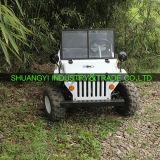 El 1200W más nuevo E-ATV