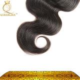 方法ブラジルのバージンの毛の拡張毛のベンダーボディ波(FDXI-BL-111)