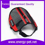 Maglia del cane di servizio dei vestiti di alta sicurezza di visibilità Nizza
