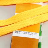 Merletto piano del poliestere su ordinazione per il pattino (hzx-011)