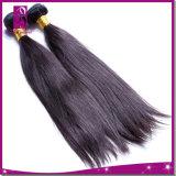 Le cheveu normal droit 100% indien de Vierge le plus neuf