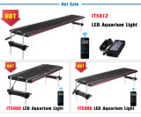 Hoher Pariwert 48 Zoll CREE LED Aquarium-Licht-