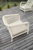 屋外の庭の枝編み細工品のソファーを編むスペシャル・イベント