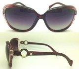 نمو جديدة بلاستيكيّة نساء نظّارات شمس مع تصميم لطيفة