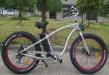 "750With500W 26 "" *4.0脂肪質のタイヤの速い電気自転車の熱い販売"