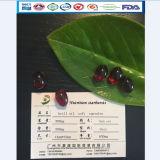 Soins de santé OEM Certificated Krill Oil capsule molle Suppléments GMP