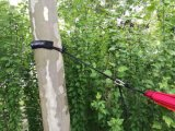 Doppio pacchetto del dispositivo d'avviamento del Hammock. Include il Hammock, le cinghie dell'albero e Carabiners di nylon surdimensionati