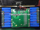 """bateria de lítio de 54V 4.4ah para """"trotinette"""" do balanço do Chariot elétrico o mini"""
