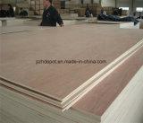 M. Glue Cheap Plywood pour l'usage d'emballage ou l'usage de palette