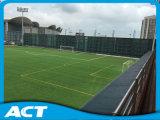 Campo di erba non intermedio di gioco del calcio V30-R