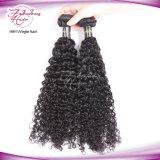 Rohes natürliches lockiges Haar-Extensions-volles Häutchen-unverarbeitetes brasilianisches lockiges Haar