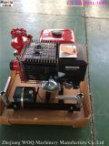 Пожарный насос Jbq5.5/10 нефти HP 13 с приводом от двигателя